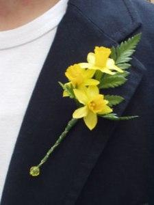 daffodil-buttonhole