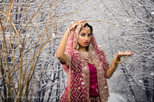Vancouver+Wedding+Photography+Indian+Winter-571